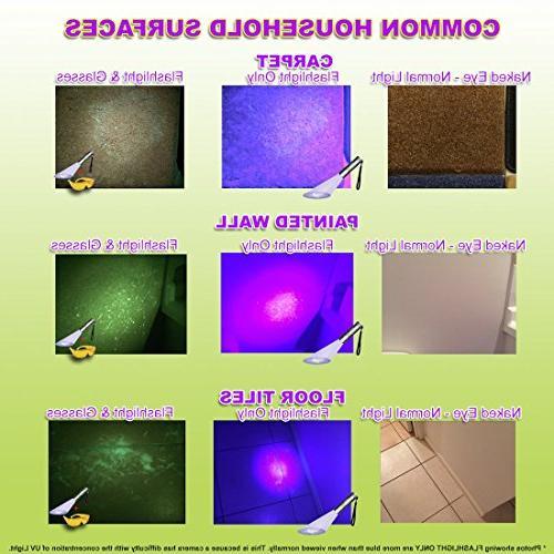Doggone Pet Products Flashlight Detector Blacklight Dry & Carpets, Hard Paint. Batteries With Ultra Violet Blacklight