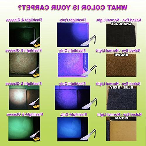 Doggone Pet Flashlight Urine Blacklight Dog & Cat on Carpets, Hard Paint. Batteries With LED Violet